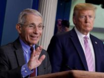 Dr. Anthony Fauci says possibility of coronavirus immunization being profoundly compelling isn't 'extraordinary'