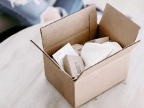 5 Alternative Biodegradable Packaging to use for Shipping Products
