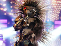 'The Masked Singer' Discloses the identity of Robopine: Here's the star behind the mask